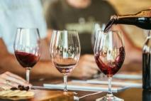 Bletting - Wine tasting in Bratislava - Wine tasting in Europe