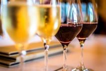 Slowakische Folklore - Weinprobe