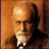 Freud Amar