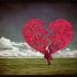 M.y love